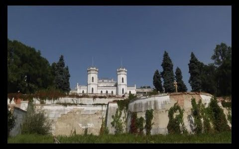 na harkivshhyni sharivskyj palat