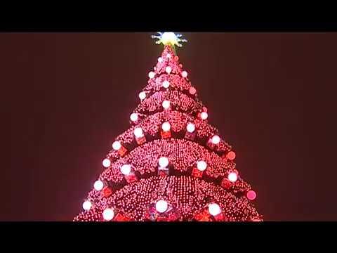 Харківську ялинку обрали найвищою новорічною ялинкою в Україні