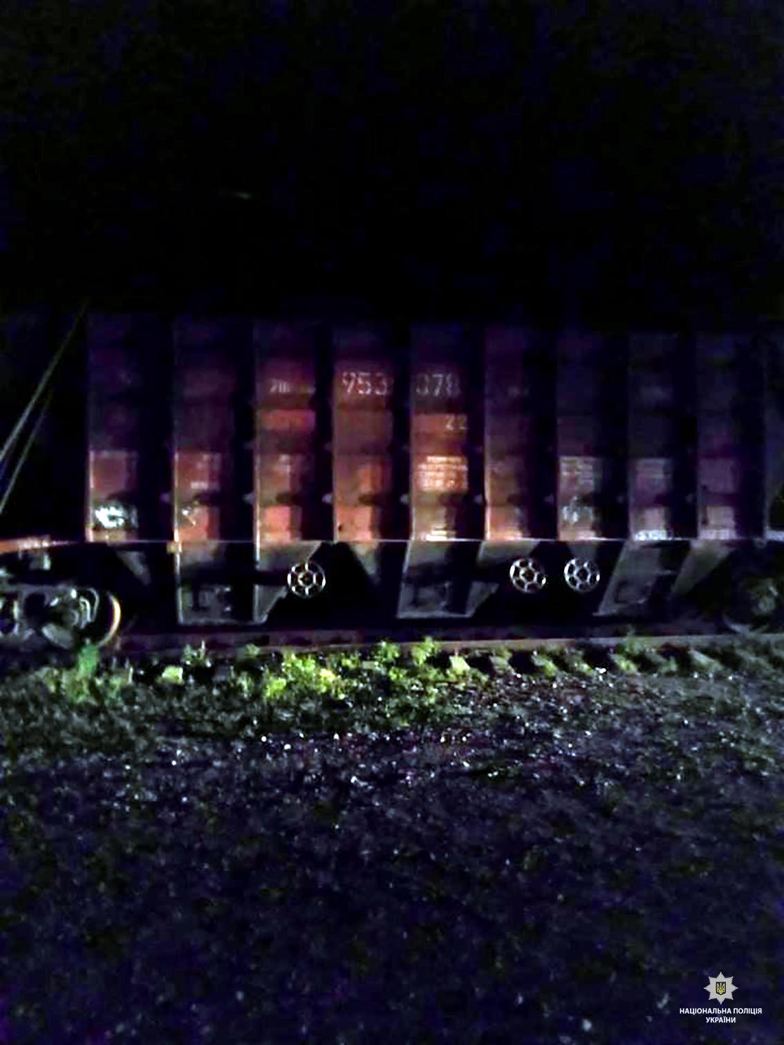 На Харківщині молодика вбило струмом від електродроту