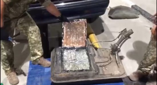 Харківські прикордонники виявили 14 кг наркотиків на кордоні з Росією