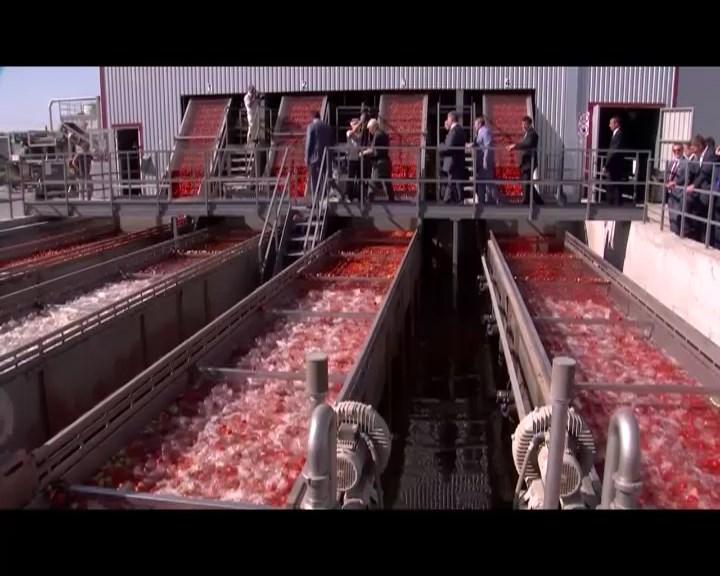 На Миколаївщині відкрили завод із переробки та зберігання сільськогосподарської продукції