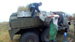 На Харківщині у водойми випустили 9,7 тис. екз. рослиноїдних видів риб