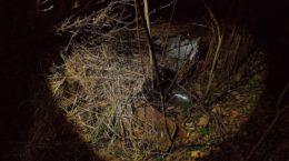 На Донеччині СБУ виявила схованки зі зброєю та боєприпасами